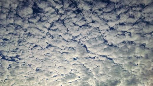 sky1 (520x293)